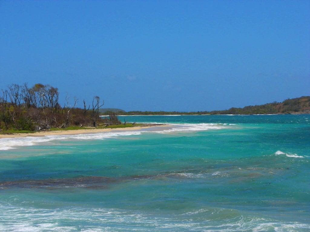 Voyage en Martinique : vacances à la plage