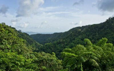Visiter Saint-Pierre en Martinique