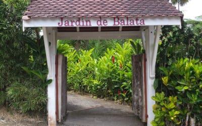 Le Jardin de Balata : faut-il le visiter ou non ?