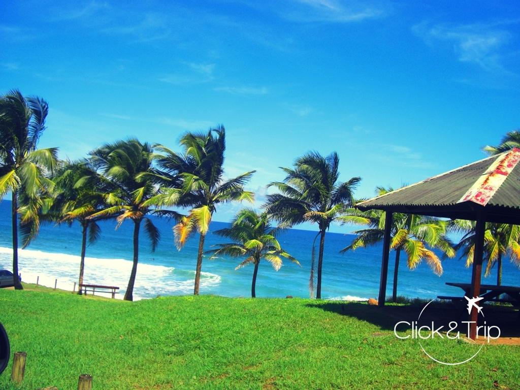 plage de l'Anse Charpentier (Martinique)