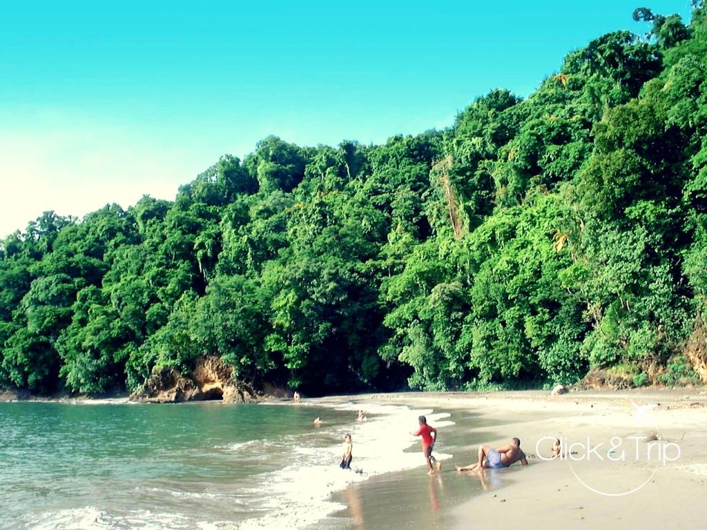 plage de l'Anse Noir (Martinique)