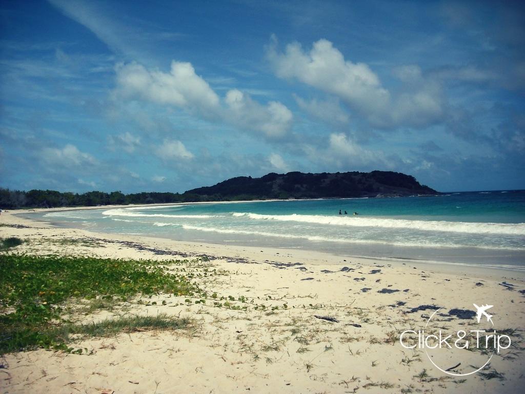plage de l'Anse Trabot (Martinique)